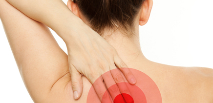 Back & neck pain solutions for EI member's and their families.